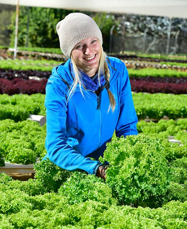 Young woman working in vegetable nursery